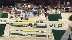 Nanteuil van T&L stallion competition Gent 2019