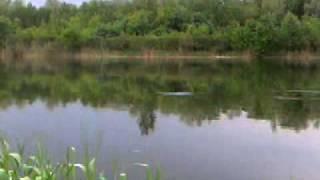 видео Цюрупинск (Херсонская область)
