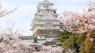 村田英雄 - 白鷺の城