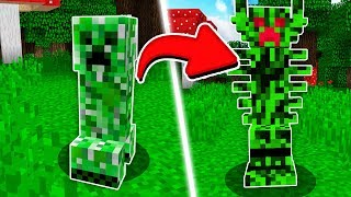 MINECRAFT WANTS NEW CREEPERS!