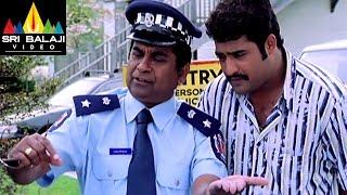 Naa Alludu Movie NTR Cheating Brahmi Comedy Scene | Jr.NTR, Shriya, Genelia | Sri Balaji Video