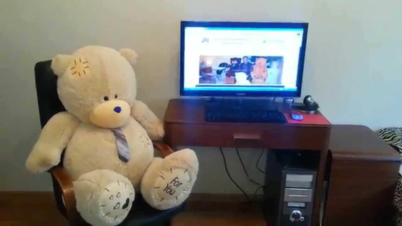 Где купить медведя в Москве 8(916)702-11-08 - YouTube