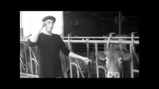 Comment peser une vache ?
