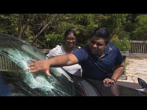 Close Call For Auckland Family After Axe Comes Flying Through Car's Windshield