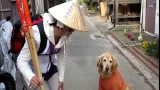 四国ガチンコ!2016逆打ち GET OVER~杖大師・鎌大師・円明寺参拝~