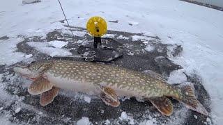 Первый лед 2019 Экстримальная рыбалка