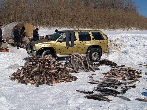 #20 Необычные случаи на рыбалке!