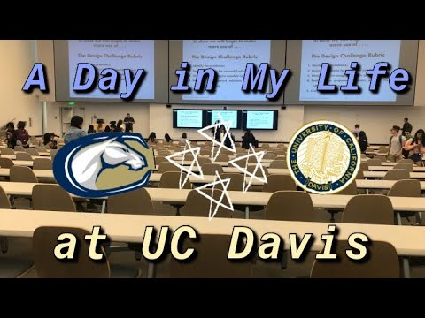 A Day in My Life At UC Davis // Spring Quarter