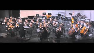 "Philharmonic Orchestra - ""Allegro Barbaro"""