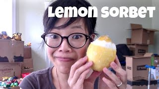 Lemon Sorbet In A Lemon - Whatcha Eating? #181