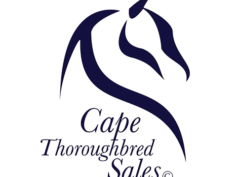 CTS March Yearling Sale 2017 - Durbanville Race Course