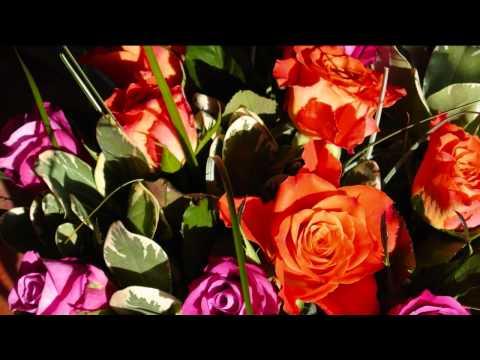 Geburtstagsgrüße, ein Blumenstrauß zum Geburtstag, Geburtstagsvideo, Geburtstagslieder, kostenlos