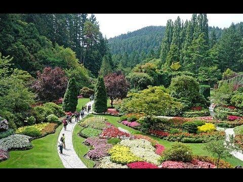 total plaisir un des plus beaux jardins du canada a voir en colombie britannique butchart gardens