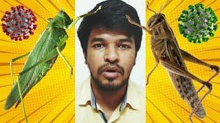 Next Thala Vali | Tamil | Madan Gowri | MG