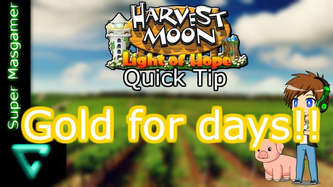 Harvest Moon: Light Of Hope Exploit Grants Extra Money - One