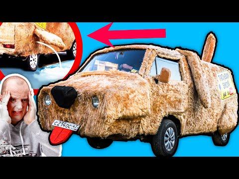 Жесть! Машина собака: как ее мыть, водить и получить 8 штрафов #ДорогоБогато Самодельный!