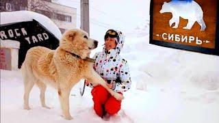 Горнолыжный курорт Шерегеш 2020 Трасса SKY WAY Впервые на лыжах