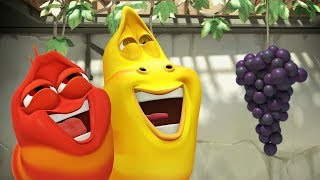 LARVA - THE GRAPE ESCAPE | Cartoon Movie | Cartoons For Children | Larva Cartoon | LARVA Official