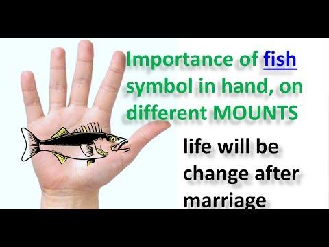 English Fish Symbol