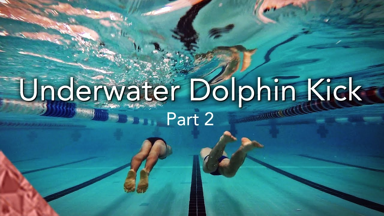 How to Dolphin Kick How to Dolphin Kick new images