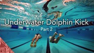 Video 2 Skills to improve your underwater dolphin kick. Swim faster underwater download MP3, 3GP, MP4, WEBM, AVI, FLV Juli 2018
