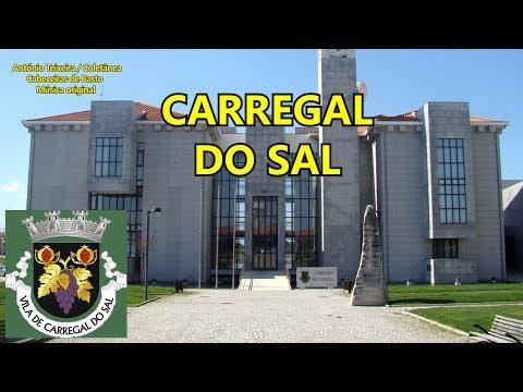 678 CARREGAL DO SAL 4K ORIGINAL – compositor António Teixeira / Cabeceiras de Basto / Coletânea