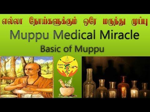 எல்லா நோய்க்கும் ஒரே மருந்து முப்பு | Muppu Medical Miracle | Tamil siddha medicine | Organic Living