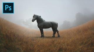 Basic Photoshop Photo Manipulation Tutorial - The Horse
