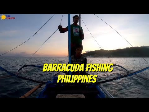 BARRACUDA TRADITIONAL FISHING (ASOGON AT GULISAN) SA PAMAMAGITAN NG HANDLINE MINDORO PHILIPPINES!!