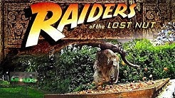 Raiders of the Lost Nut - AirHeads, episode 12