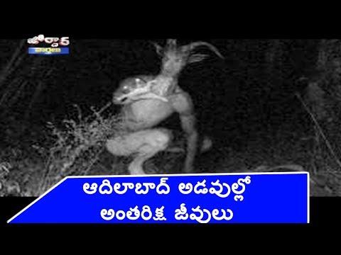 Alien Found in Adilabad Forest | Jordar News | HMTV