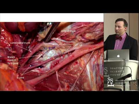 Update on recent spine research from The Seattle Science Foundation - R. Shane Tubbs, PhD, PA-C