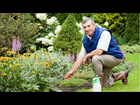 Clique e veja o vídeo Treinamento de Jardineiro - Plantio