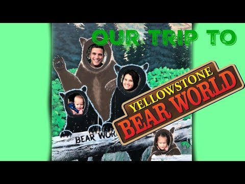 YELLOWSTONE BEAR WORLD!
