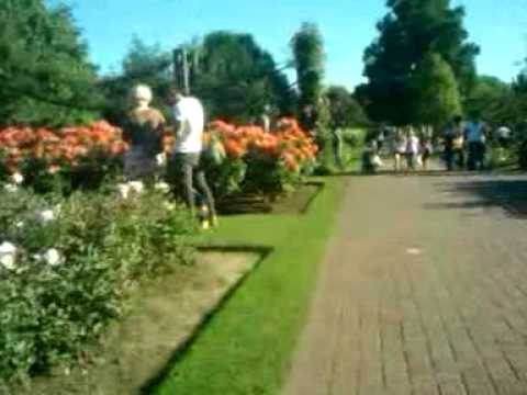 Queen mary rose garden