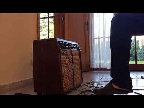 Mesa Boogie [Vanessa] Mark IV '92 vintage / PRS Custom 22