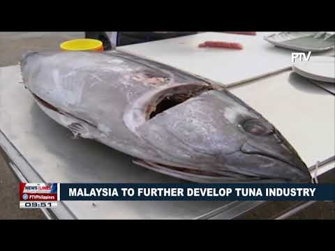 Malaysia to further develop tuna industry