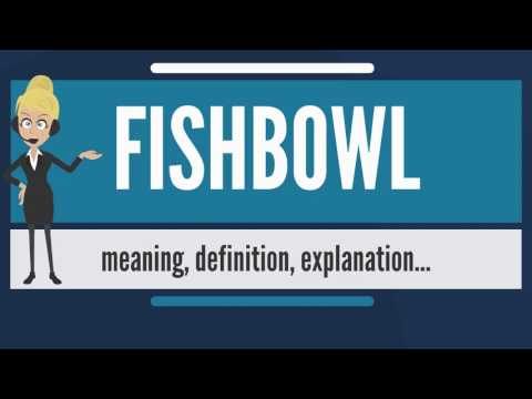 What Is FISHBOWL? What Does FISHBOWL Mean? FISHBOWL Meaning, Definition & Explanation