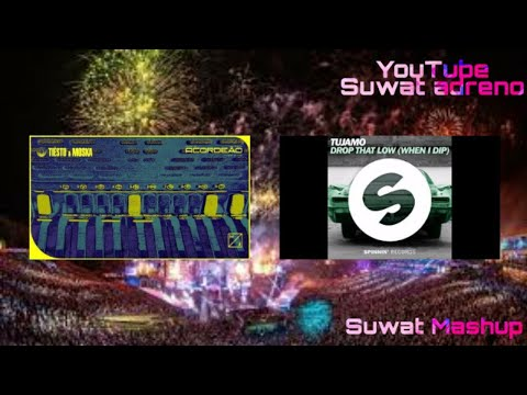 Tiësto & MOSKA - Acordeão vs Tujamo - Drop That Low [Suwat Mashup]