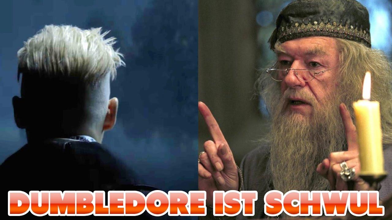 dumbledore schwul