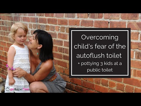 Overcoming child's fear of the autoflush toilet + pottying 3 kids at a public toilet