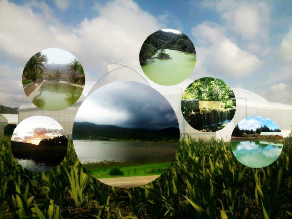 Construcciones para el aprovechamiento del agua en zonas for Construccion de piletas de agua