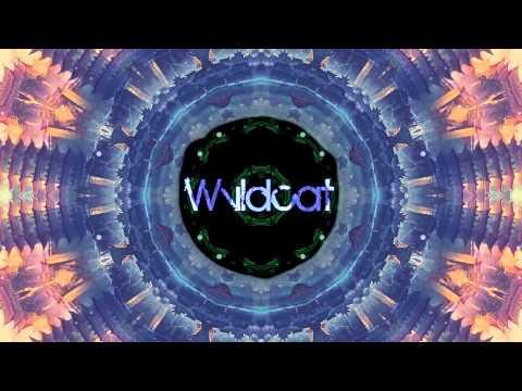 Waka Flocka Flame  No Hands Wvldcat Remix