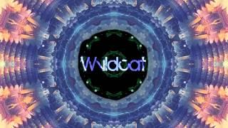 Waka Flocka Flame - No Hands (Wvldcat Remix)