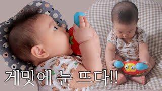 꽃게 먹방? 7개월아기 장난감 롤링크랩 언박싱