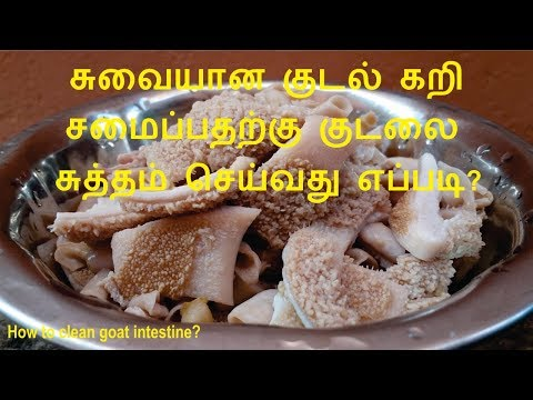 ஆட்டு குடல் சுத்தம் செய்வது எப்படி   Boti Cleaning in Tamil