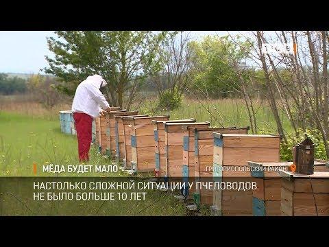 Мёда будет мало