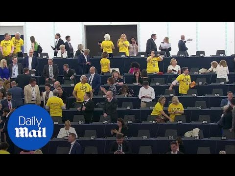 Lib Dems and Brexit Party in contrasting protests at European Parliament opening
