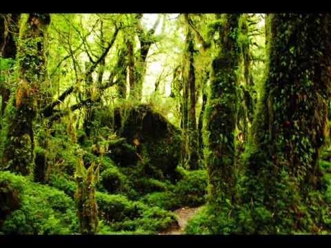 Paisajes De Chile Mejores Fotos 2011 Youtube