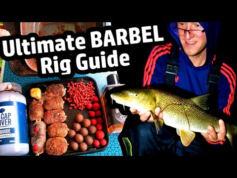 pro-fishing-for-barbel---ultimate-rig-tutorial-and-secret-tips
